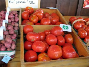 Tomatoes - Smell Great!