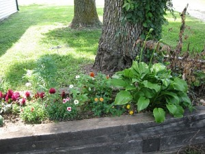 Flower Gardening for Normal People | BlogHer