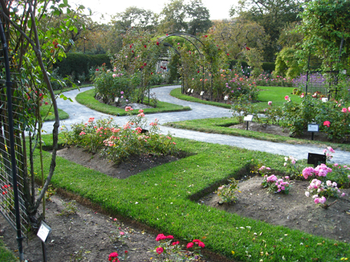 Another Broad View of the Rose Garden