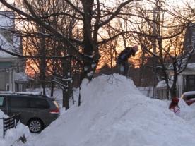 Snow Mountain Climber1