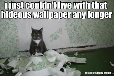 Cat in Front of Shredded Wallpaper