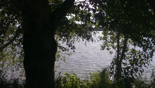 Quiet View