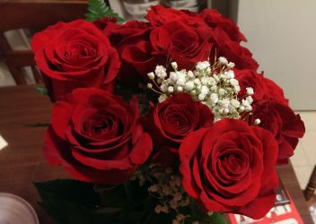 Roses from my sweetie