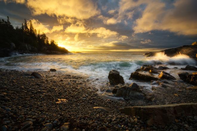 Acadia-Gold