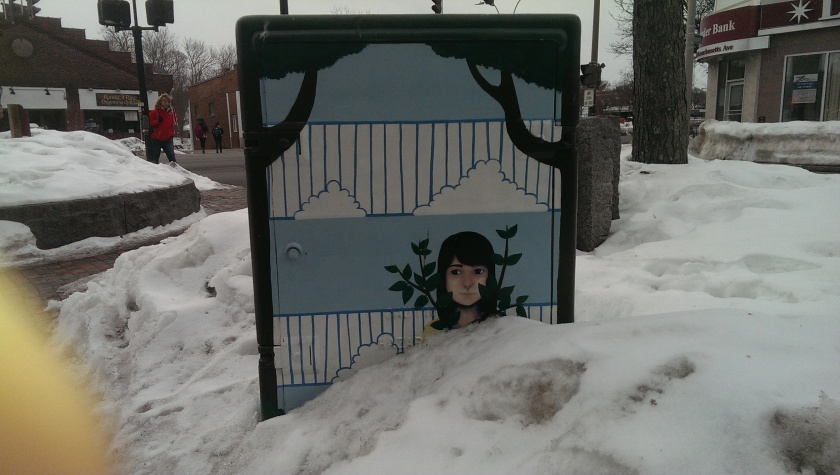 Snow Bound utility box
